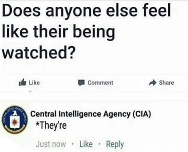 funny post funny quote does anyone else feel like their being watched cia responds *they're