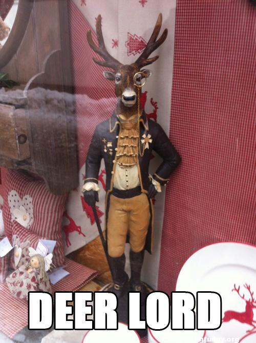 funny caption funny meme deer lord deer dressed in lord costume