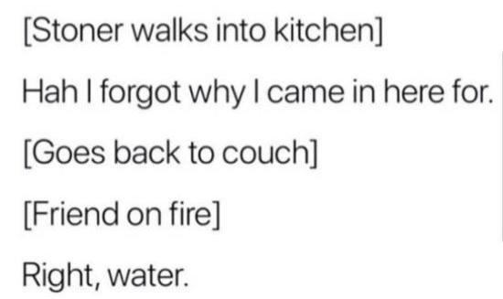 funny post, funny status stoner walks into kitchen ha forgot why i came in here goes back to couch friend on fire right water