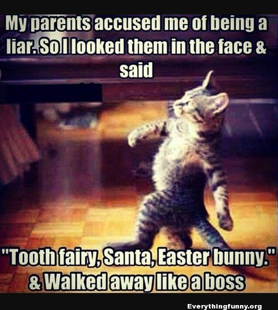 funny cat stride meme parents accused my of lying. looked them in the face and said tooth fairy, santa, easter bunny and walked away like a boss