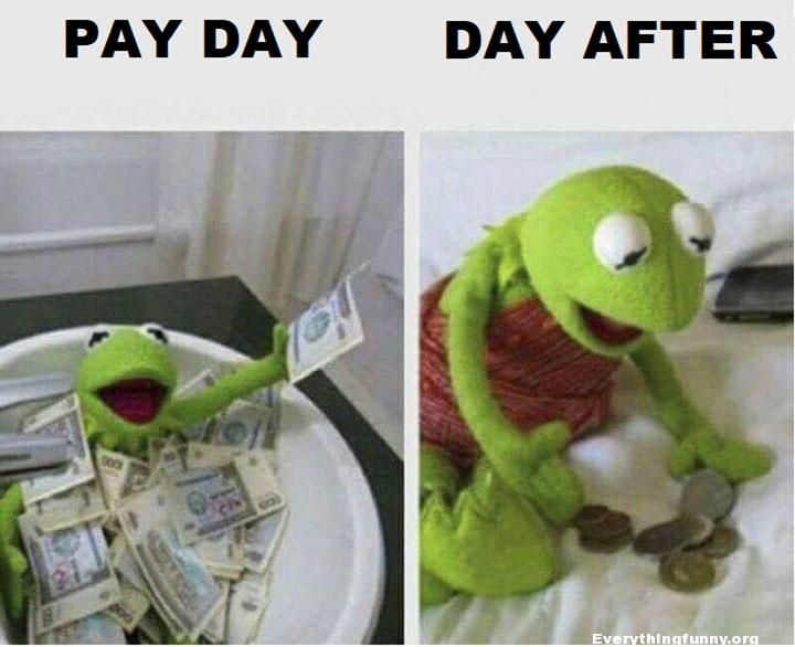 funny kermit meme, funny photo, pay day day after, funny photo, funny caption