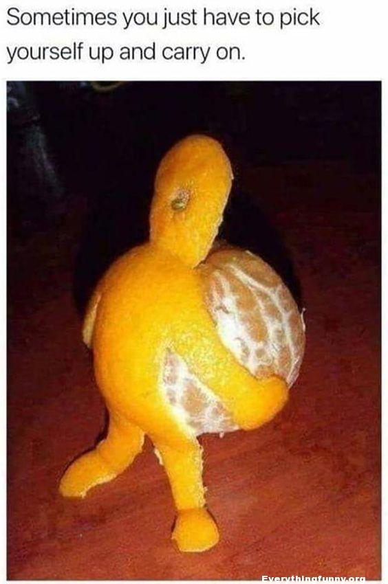 funny caption funny meme orange peel looks like it is carrying itself quote sometimes you just have to pick yourself up and carry on