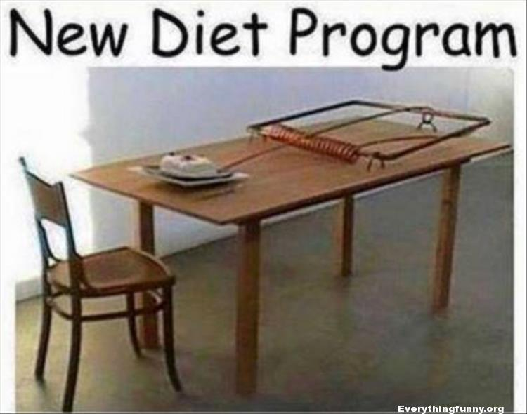 funny caption new diet program huge mouse trap on table