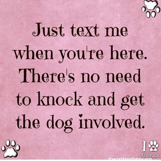 funny quote just text me when you're here. There's no need to knock and get the dog involved.