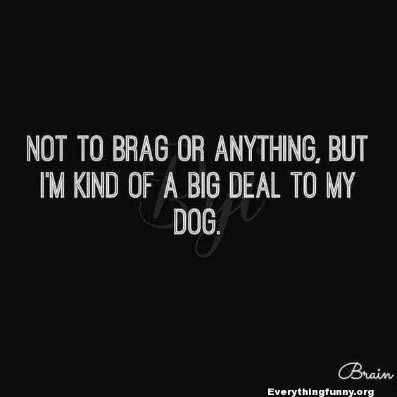 funny quote not to brag or anything but i'm kind of a big deal to my dog