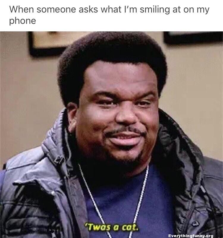 funny caption, funny office meme, when someone asks what i'm smiling at on my phone 'twas a cat daryl