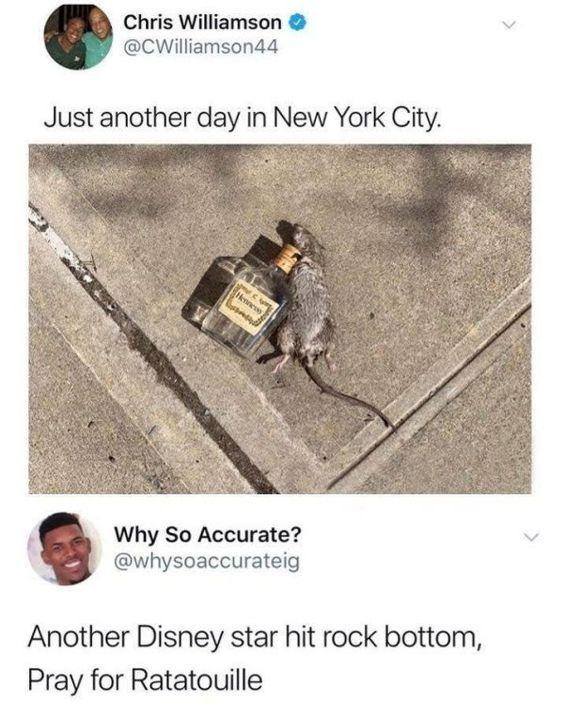 funny post, funny status, funny text, funny caption rat passed out next to bottle of liquor alcohol just another day in New York City