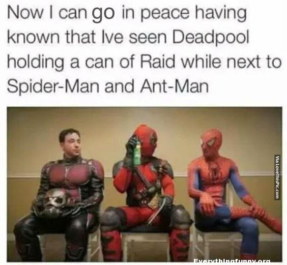 funny marvel meme, funny marvel caption now i can go in peace having known ive seen deadpool holding a can of raid while next to spider-man and ant-man