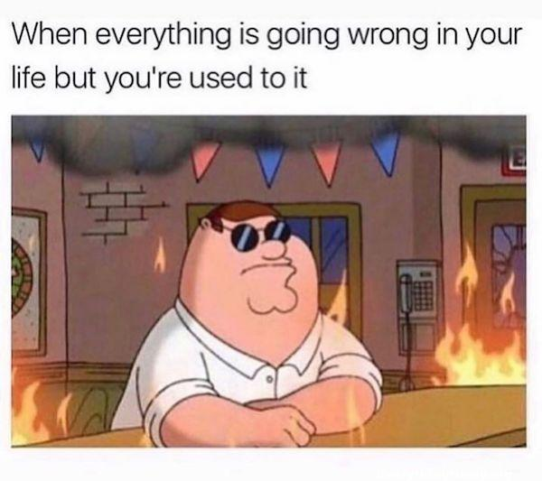 funny cartoon family guy meme when everything is going wrong in your life but your used to it fire all around sitting in bar with sunglasses on