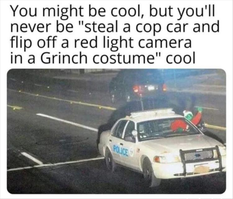 "funny caption, you might be cool but you'll never be ""steal a cop car and flip off a red light camera in a grinch costume cool"""
