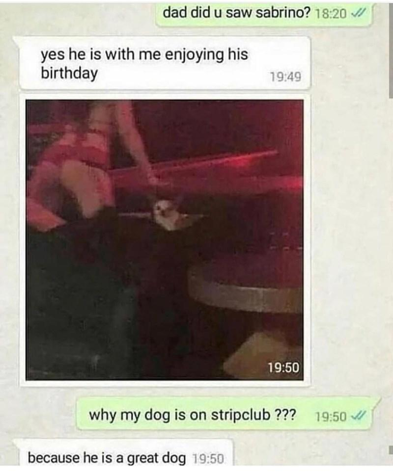 funny text message, dog taken to strip club by dad why is sabrino at strip club because he is a good dog