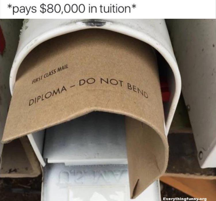 funny caption pays $80,000 in tuition diploma in mailbox please do not bend is bent