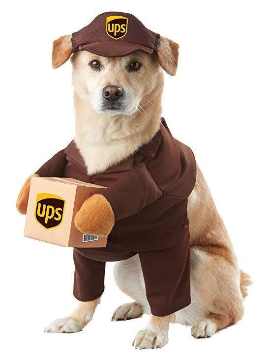 funny ups delivery man dog costume for halloween 2019