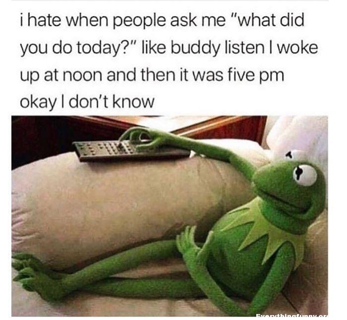 funny post funny meme funny kermit meme i hate when people ask what did you do today i woke up at noon and then it was five ok i don't know