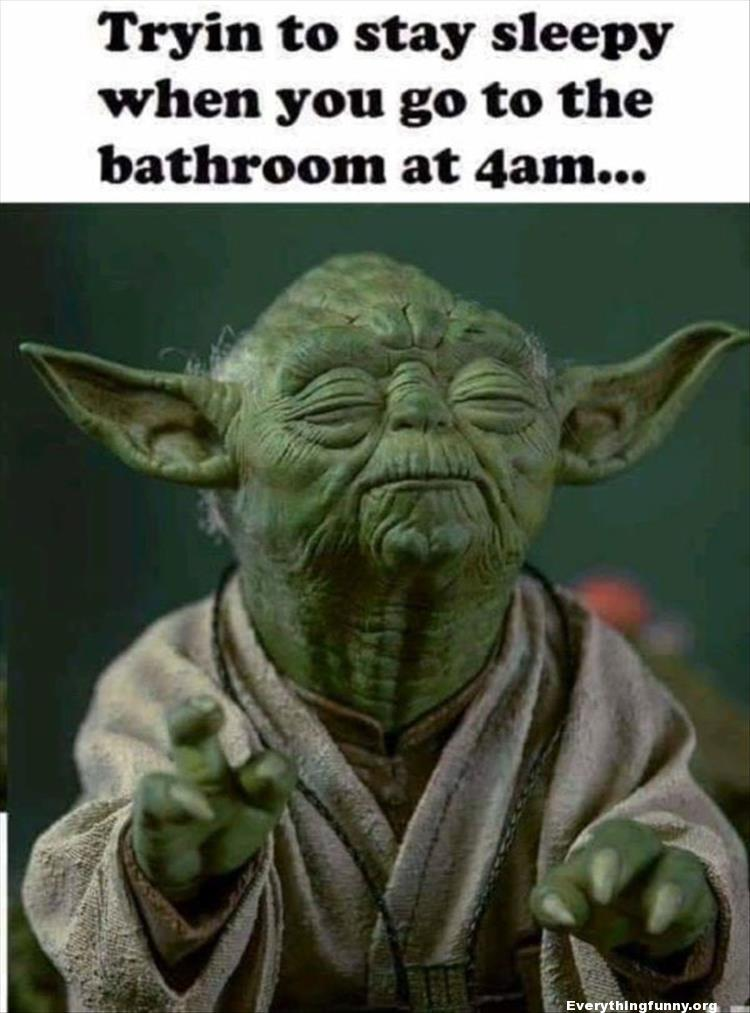 funny caption, funny relatable tryin to stay sleepy when you go to the bathroom at 4am funny star wars yoda meme