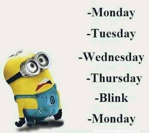 funny minion meme, funny cartoon, Monday Tuesday wednesday Thursday Blink Monday