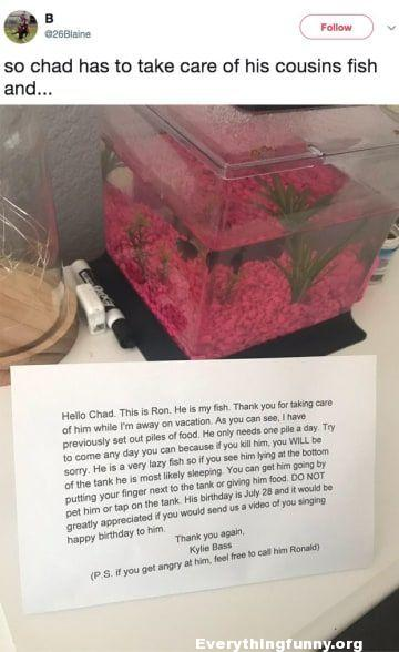 funny note so chad had to take care of his cousins fish - the funny note his cousin left behind with instructions
