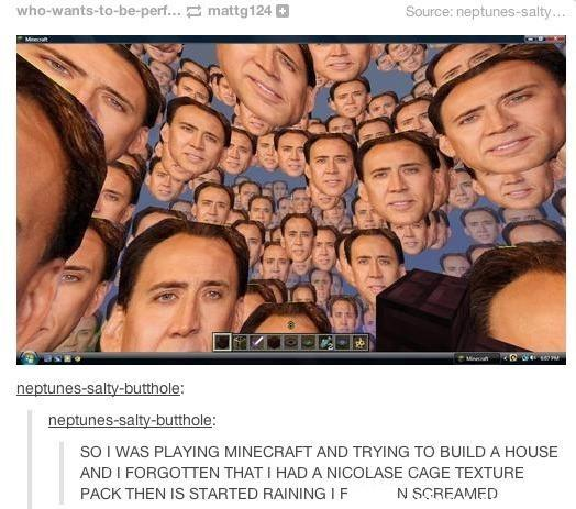 funny post, funny caption, playing minecraft building a house forgot nicholas cage texture pack started to rain and i screamed