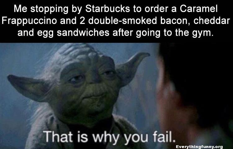 funny quotes, funny yoda memes, funny sayings, stopping by starbucks and 2 sandwiches after gum this is why you fail