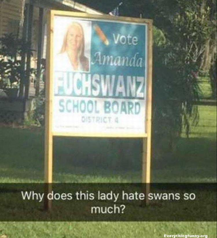 funny billboards funny sign amanda fuchswanz candidate why does this lady hate swans so much