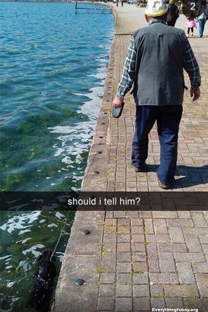 funny picture old man walking dog dog falls in water should i tell him?