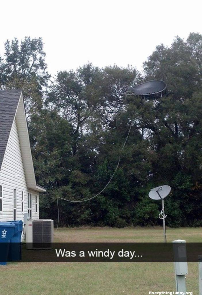 funny windy day trampoline ends up in tree picture