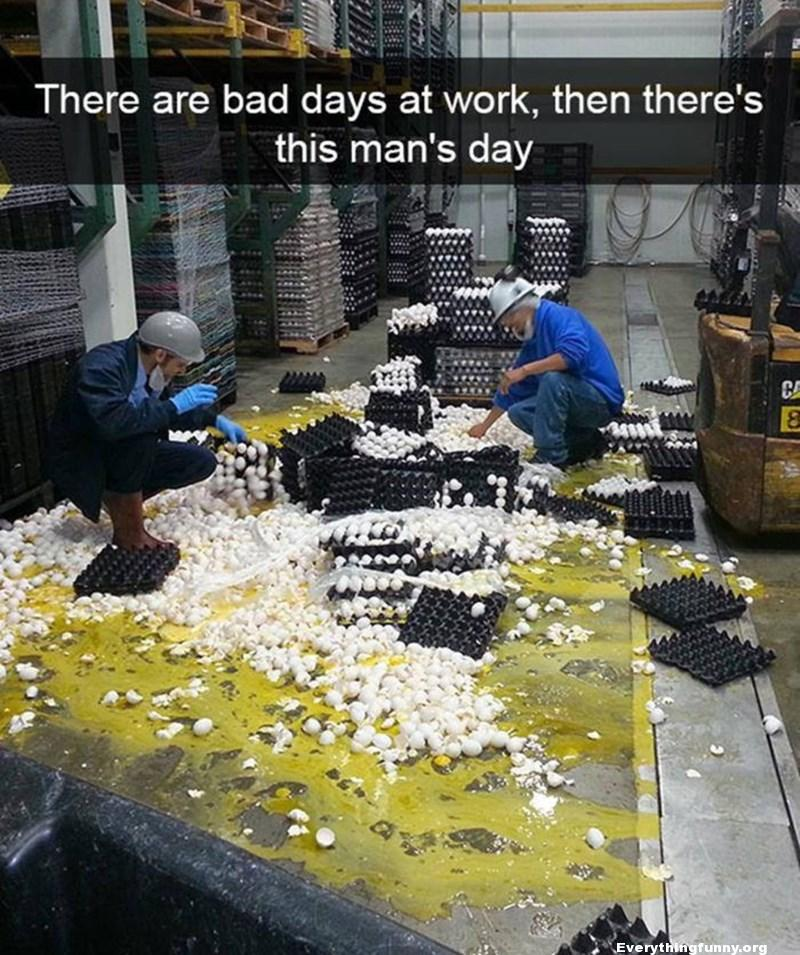 funny caption, funny pictures, funny bad days at work, cleaning up hundreds of broken eggs,