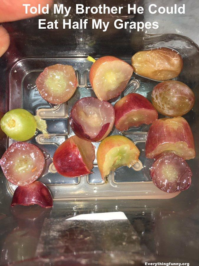 told my brother he could eat half of my grapes - he bit each one in half