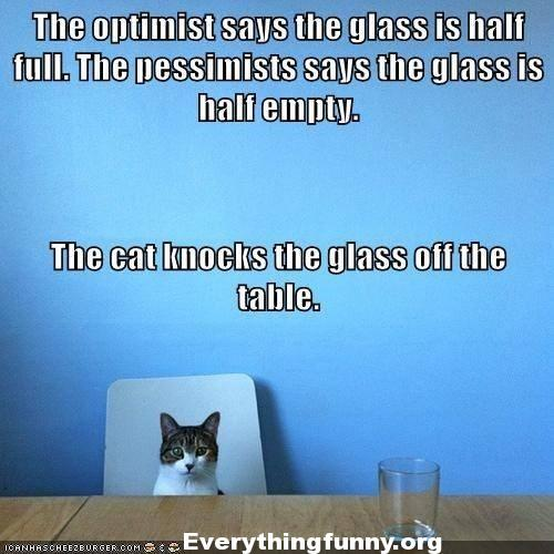 funny quote, funny cat picture with captions optimist glass half full pessimist glass half empty cat knocks class off the table