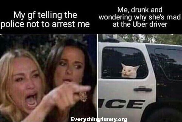 funny woman yells at cat meme housewives meme my gf telling the police not to arrest me me drunk and wondering why she's mad at the Uber driver