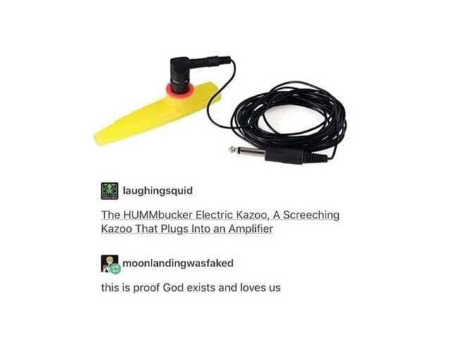funny meme, funny post the hummbucker electric kazoo a screeching kazoo that plugs into an amplifier this is proof God Exists and love us