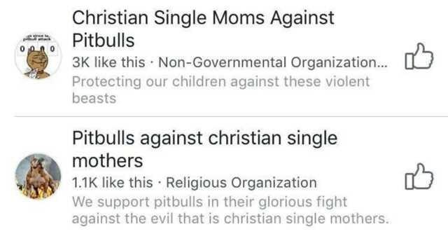 funny meme christian single moms against pitbulls group vs pitbulls against christian single mothers