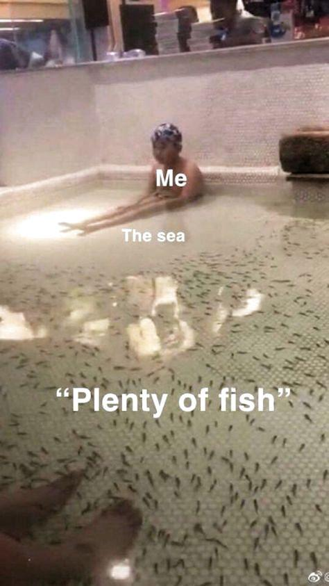 funny meme me the sea plenty of fish none coming anywhere near me