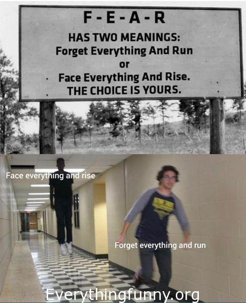 funny meme funny caption fear has 2 meaning forget everything and run or face everything and rise the choice is yours